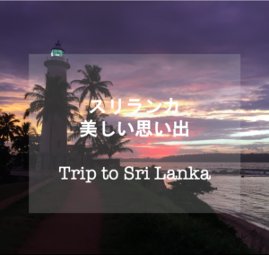 【海外旅行】スリランカ女一人旅 美しい思い出