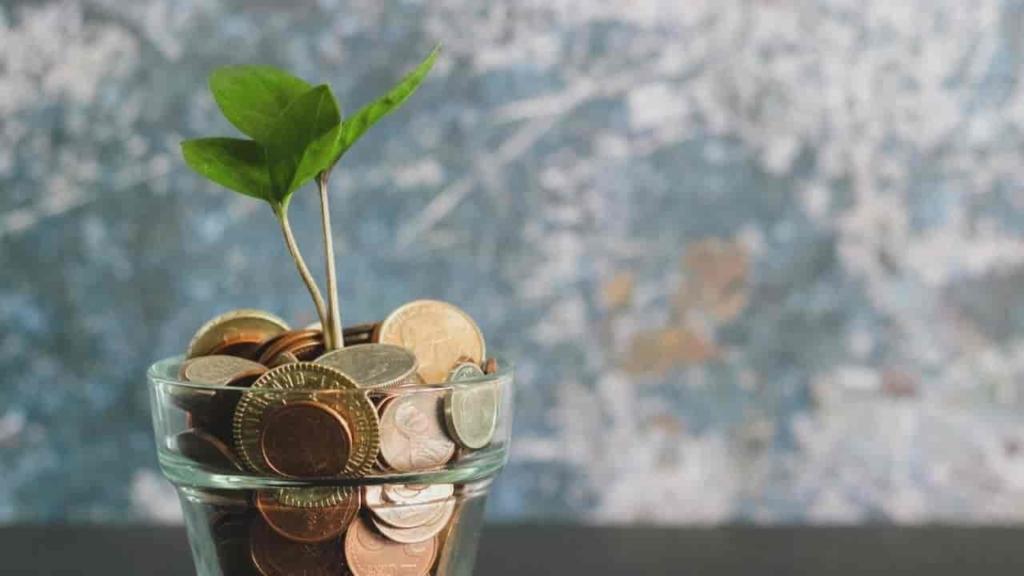 経済面の2人の関係 Financial aspects of the relationship